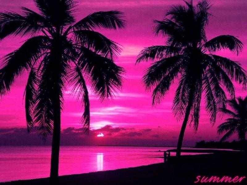 Un coucher de soleil couch du soleil rose - Coucher de soleil rose ...